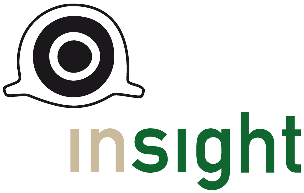 INSIGHT Projektlogo